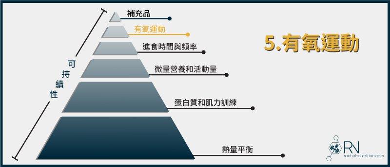 減脂金字塔:有氧運動